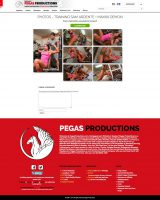 pegasproductions3